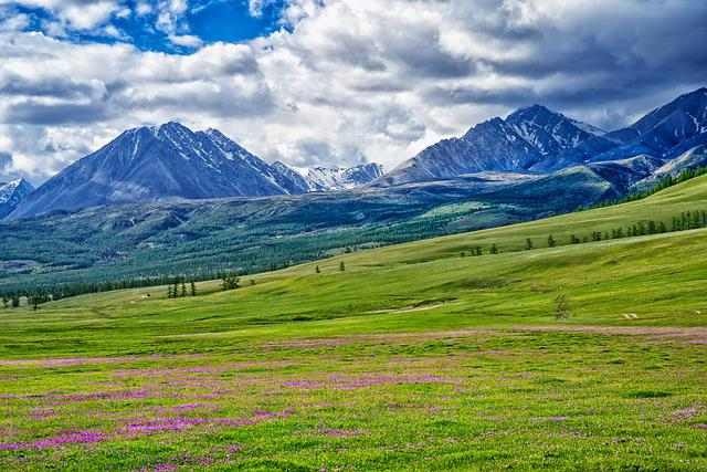 Landscape, Mongolia, The Russian Border Mountains