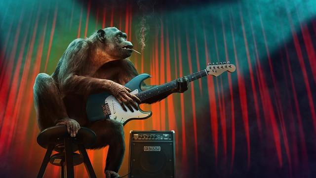 Monkey, Music, Concert, Guitar, Stage, Amplifier