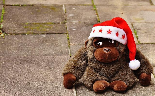 Christmas, Santa Hat, Stuffed Animal, Soft Toy, Monkey