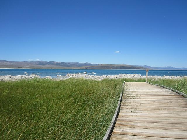 Mono Lake, Lake, California, Scene, Walkway, Path