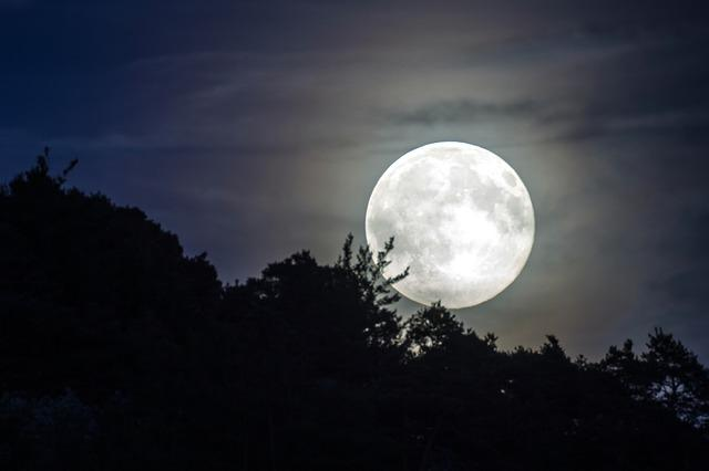 Full Moon, Evening Sky, Moonlight, Moon, Mood
