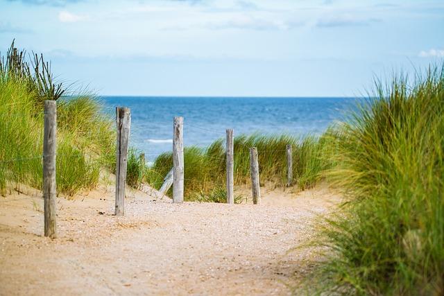 Thin, Sea, Romance, Mood, Grass, Sun, Fence, Water