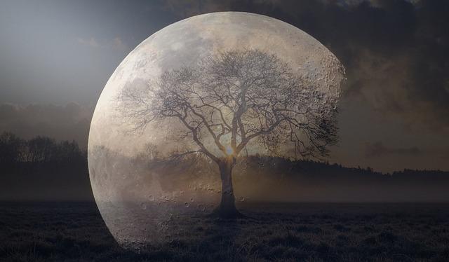 Moon, Night, Mood, Sky, Full Moon, Astronomy, Night Sky