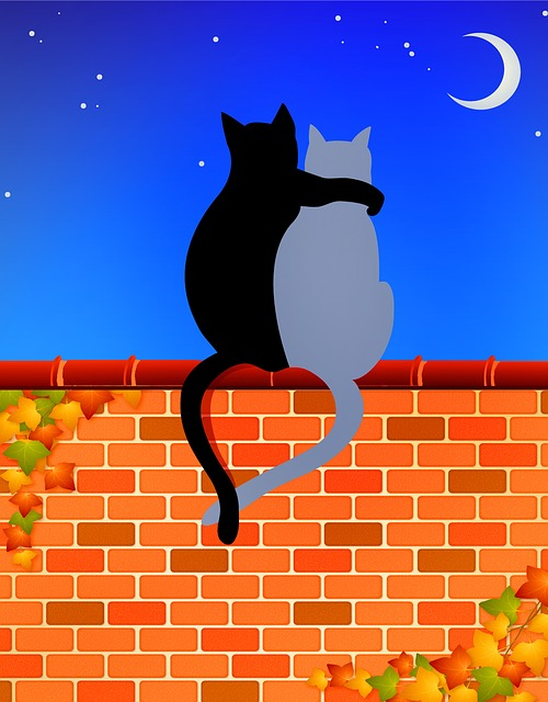 Cats On Brick Wall, Cat Lovers, Moon, Dark, Stars