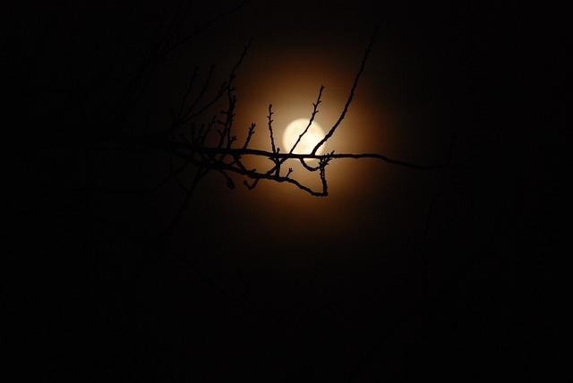 Night, Moon, Dark, Boomn Saint Nicholas