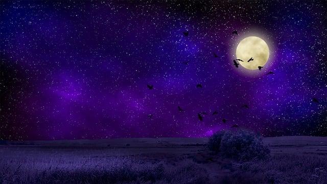Moon, Moonlight, Night, Sky, Dark, Lunar, Landscape