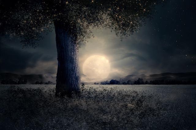 Night, Landscape, Tree, Fairy Tale, Fantasy, Moon