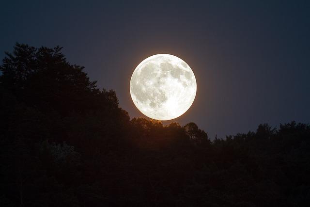 Full Moon, Evening Sky, Moonlight, Moon, Mood