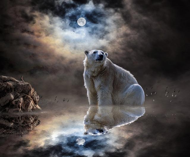 Landscape, Sea, Water, Reflection, Moon, Moonlight