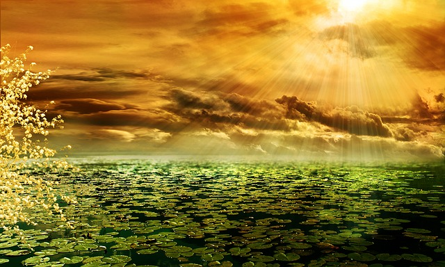 Composing, Sunbeam, Afterglow, Morgenrot, Pond, Mood