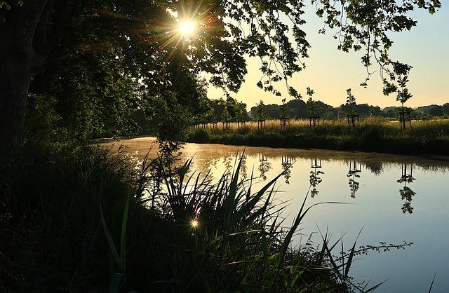 Sunrise, Morning, Canal Du Midi, France, South