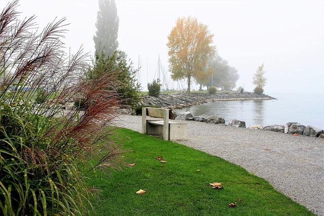 Bench, Lake, Autumn, Morning Mist, Dawn, Foliage