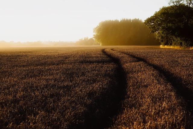 England, Landscape, Scenic, Sunrise, Dawn, Morning