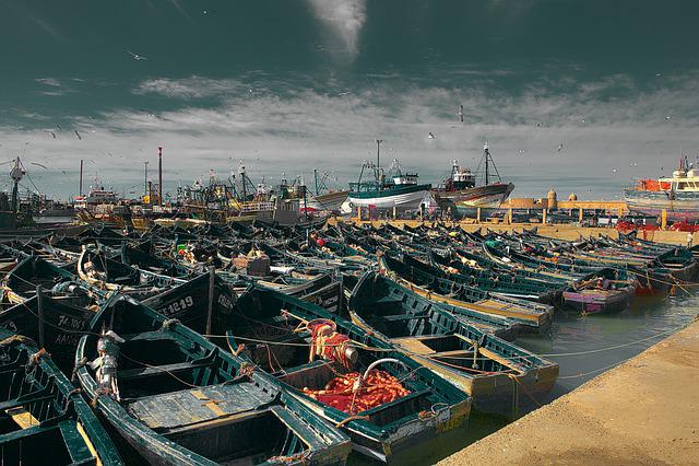 Morocco, Essaouira, Coast, Boats In The Harbor