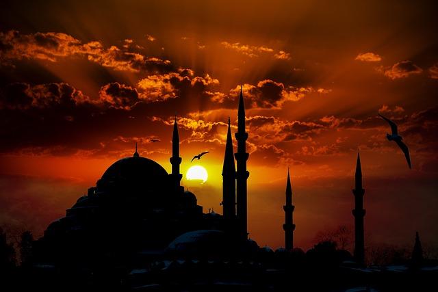 Suleymaniye Mosque, Mosque, Eminönü, Gulls, Turkey