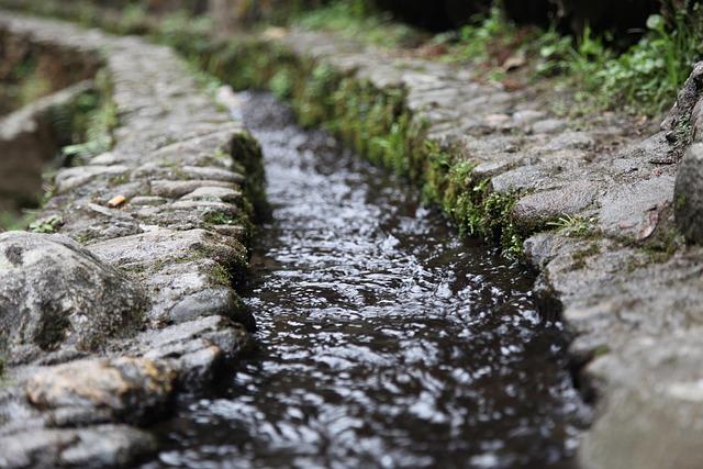 Creek, Running Water, Moss, Xinxing
