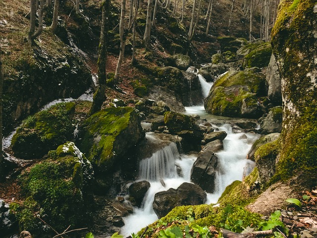 Water, Mountain, River, Stream, Rocks, Moss Green