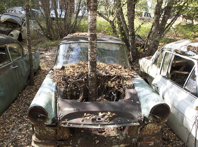 Car, Scrap, Moss, Old, Forest, Rust, Green, Rusty