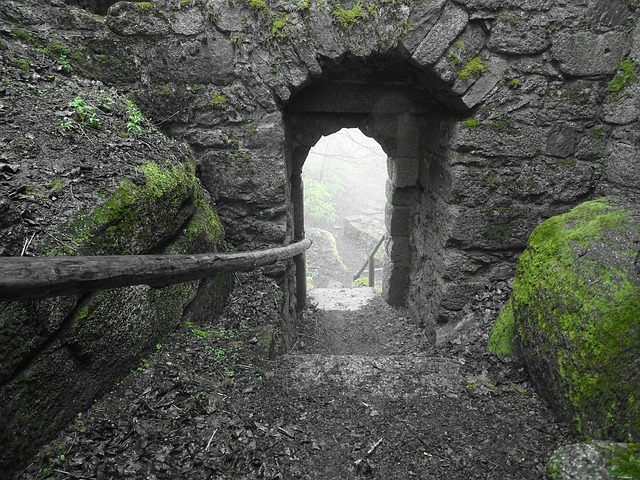 Castle, Ruin, Output, Moss, Green, Old, Stone, Archway