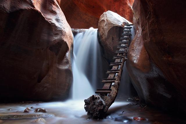 Branch, Cave, Ladder, Motion, Nature, Rock Formation