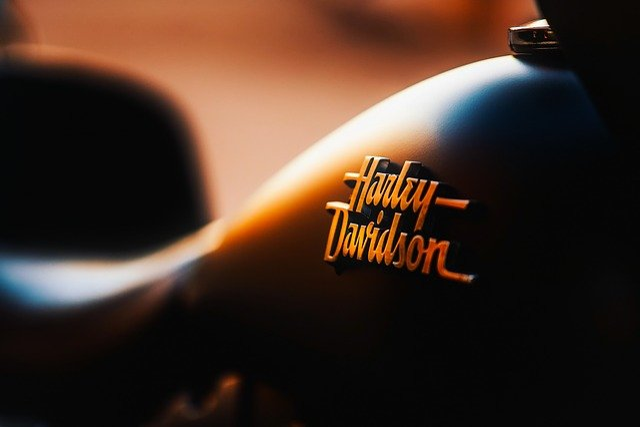 Motorcycle, Transportation, Emblem, Harley-davidson