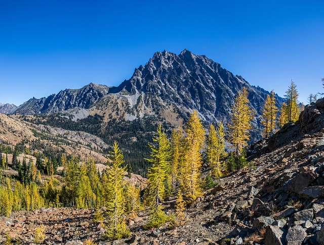 Mountain, National Forest, Wilderness, Mount Stuart