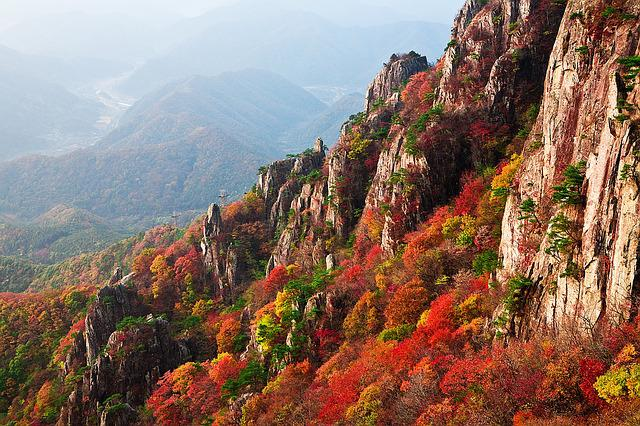 Mountain, Autumn Leaves, Autumn, Landscape, Leaves