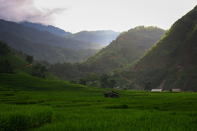 Mountain, Panoramic, Nature, Landscape, Hill, Sapa