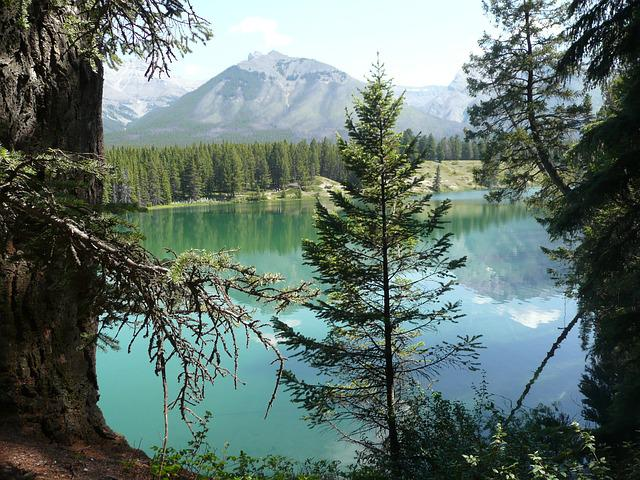 Mountain, Lake, Alberta, Landscape, Mountain Lake