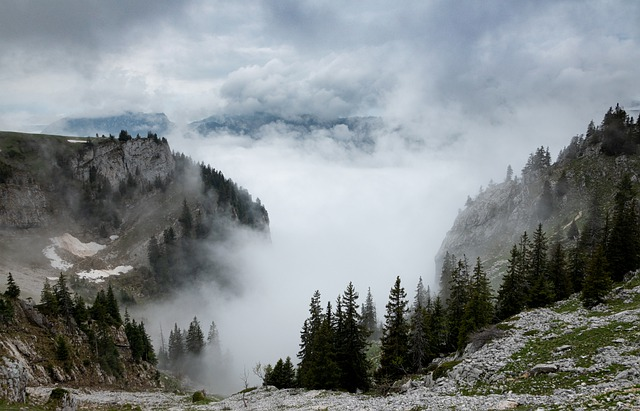 Mountain, Mist, Landscape, Nature, Misty, Clouds