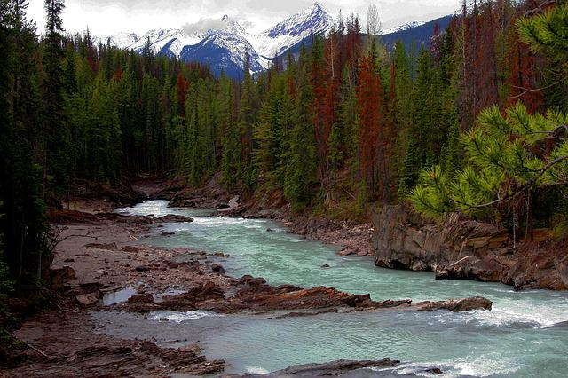 River, Landscaper, Mountain Range, Trees, Water, Nature