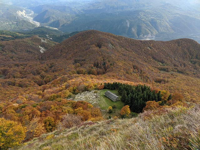 Mountain, Autumn, Nature, Forest, Trees, Landscape