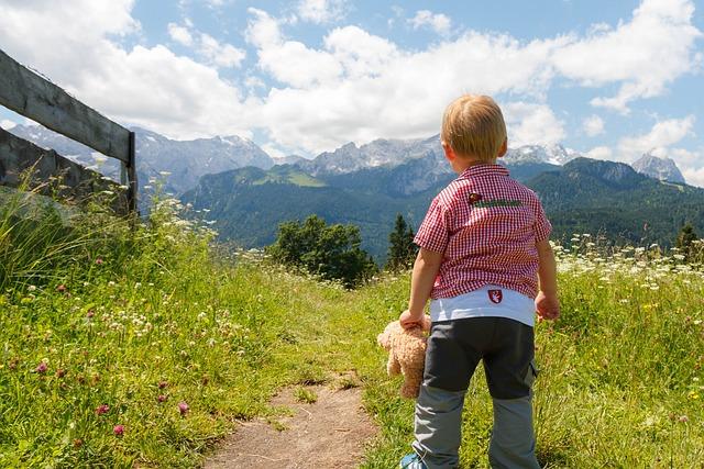 Summit, Summit Stormer, Alpine, Wanderer, Mountain