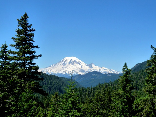 Mountain, Rainier, East Side View, Washington