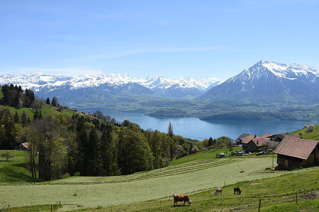 Sneezing, Lake Thun, Bernese Oberland, Mountains
