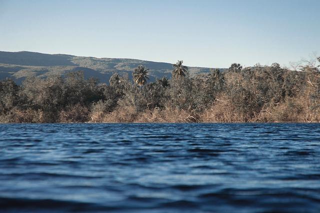 River, Lake, Bay, Landscape, Trees, Calm, Mountains