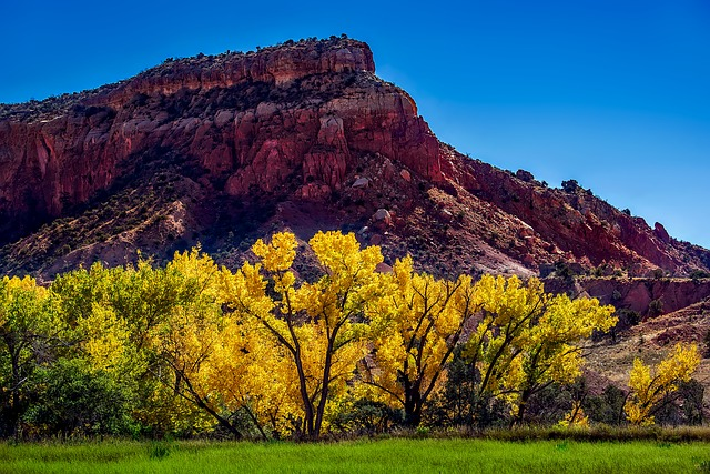 New Mexico, Fall, Autumn, Colorful, Mountains