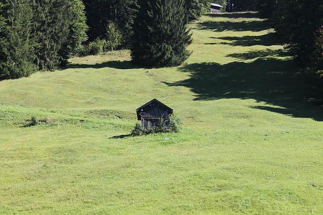 Meadow, Mountains, Landscape, Oberstdorf, Grasses