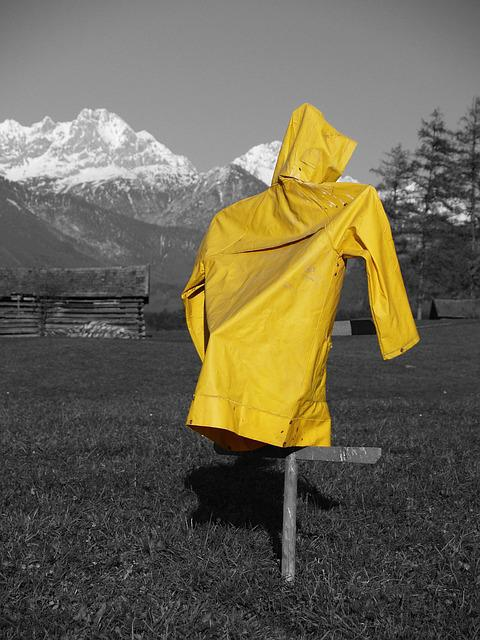 Meadow, Yellow, Rain Coat, Mountains
