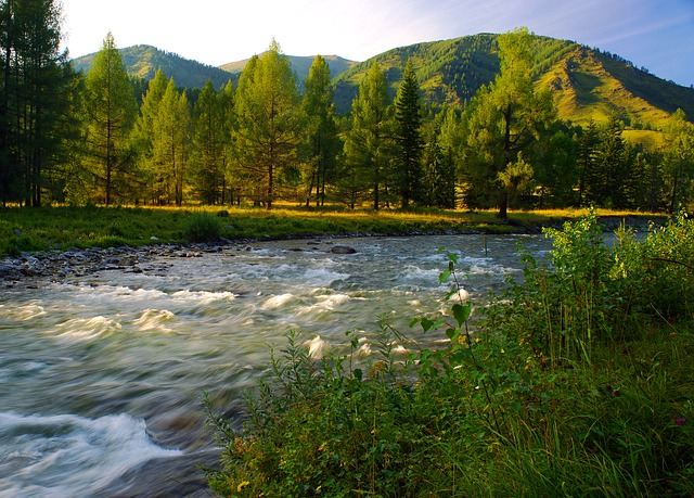 River, Evening, Mountain Altai, Landscape, Mountains