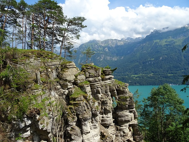 Rock, Mountains, Cliffs, Tree, Pine, Rock Edge, Lake