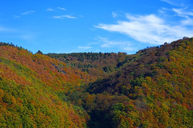 Rurtalsperre, Eifel, Germany, Landscape, Mountains
