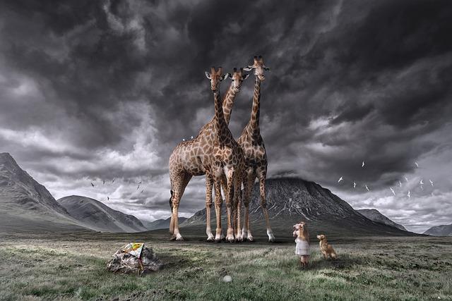 Scotland, Highlands, Mountains, Sky, Dark Sky