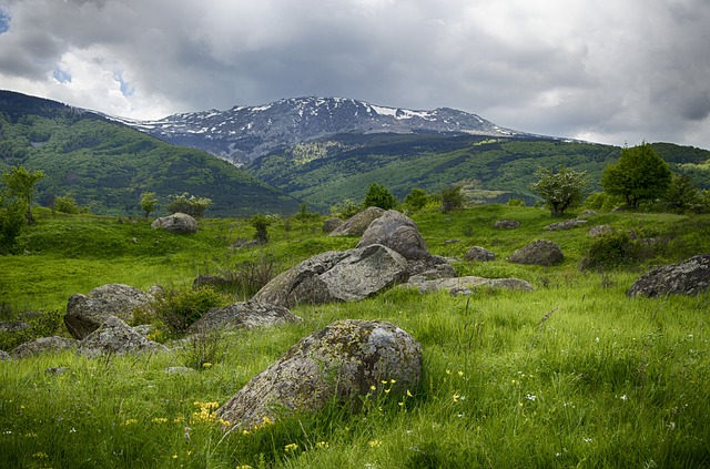 Mountains, Snow, Spring, Wild Flowers, Storm Clouds