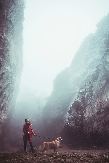 Outdoors, Fog, Girl, Dog, Stroll, Mountains, Stone