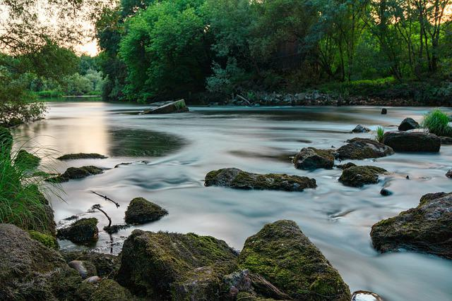 River, Tea, Miño, Mouth, Galicia, Forest, Water