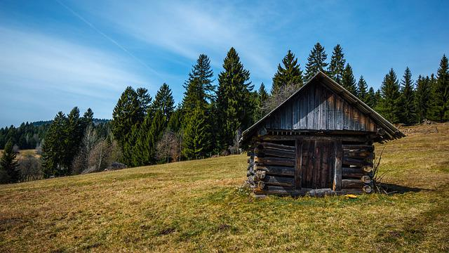 Old, Abandoned, Mow, Old Building, Slovakia, Landscape
