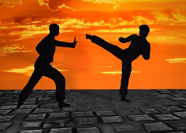 Martial Arts, Silhuetten, Muay Thai, Kick Boxing