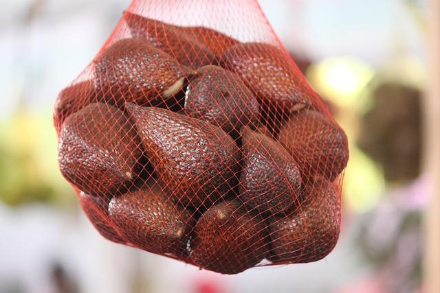 Fruit, Salak, Brown, Nature, Mufid Majnun, Banjarnegara