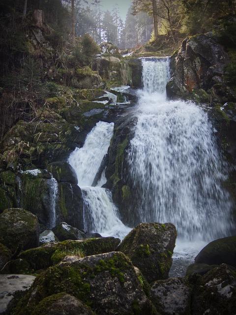 Triberg, Waterfall, Black Forest, Torrent, Murmur, Moss